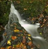 充分小瀑布在雨以后的水。   免版税库存图片