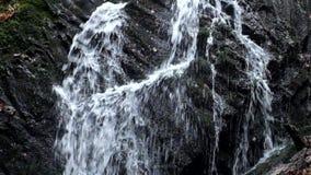 充分小瀑布在雨以后的水 在充分湿玄武岩冰砾、乳状水小河和泡影的反射 影视素材
