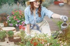 充分庭院五颜六色的植物 库存照片