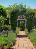 充分庭院植物 图库摄影