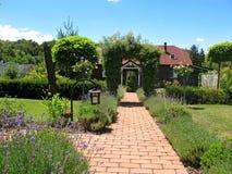 充分庭院植物 免版税图库摄影