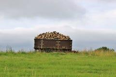 充分无盖货车木柴, Kinnekulle地区,瑞典 免版税库存照片