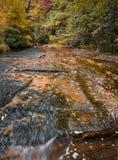 充分晃动床小河在秋天秋天颜色 免版税库存照片