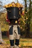 充分桶秋季叶子 免版税图库摄影