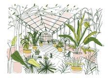 充分热带植物园内部单图有茂盛植物的栽培植物 剪影  向量例证