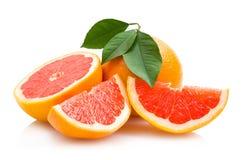 充分生动的明亮的红色葡萄柚 免版税库存照片