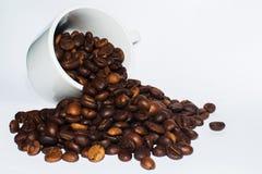 充分白色瓷杯子咖啡豆 图库摄影