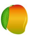 充分的例证芒果片被切的向量 免版税图库摄影