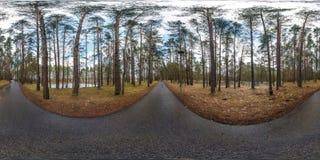 充分的球状hdri全景360度在沥青步行小径和自行车道道路的角度图在波罗园森林里 库存照片