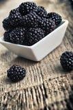在碗的黑莓 免版税库存图片