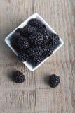 在碗的黑莓 库存图片