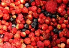 充分的碗莓果 免版税库存图片