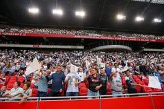 充分的阿姆斯特丹竞技场体育场的内部看法 库存照片