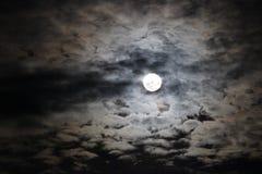 充分的鬼的月亮 免版税库存照片
