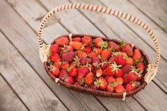 充分篮子草莓在一个夏日 库存照片