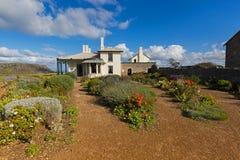 充分美丽的庭院在历史的Highfield的五颜六色的花 库存图片