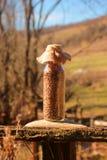充分装瓶五谷,种子的不同的类型 免版税库存照片