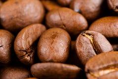 充分豆的咖啡 免版税图库摄影