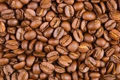 充分豆的咖啡 免版税库存图片