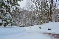 充分路有雪的,日本 免版税库存照片