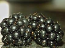 充分采摘在主要收获季节晚夏期间的黑莓宏观摄影与篮子黑莓,关闭  库存照片