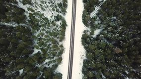 充分飞行在部分冻湖的慢寄生虫在森林雪之间 影视素材