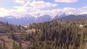充分飞过接近云杉,美丽的Velika planina云杉,小的房子和山在后面 影视素材