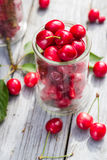 充分玻璃新近地采摘了樱桃莓 免版税库存照片
