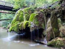 充分unic美丽的Bigar瀑布绿色青苔 免版税库存照片