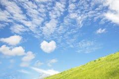 充满心脏形状爱的蓝天它在绿色领域 免版税库存照片
