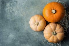 充满活力的橙色另外大小颜色苍白极好的南瓜在秸杆的在灰色石背景 感恩秋天 免版税库存照片