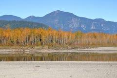 充满活力的秋天颜色在加拿大原野 免版税图库摄影