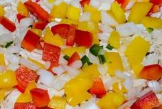 充满活力的绿色,红色和黄色喇叭花以子弹密击用葱和鸡 库存图片