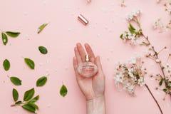充满香气水在有春天开花的妇女手上 在桃红色的顶视图隔绝了背景, flatlay 免版税库存图片