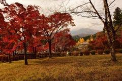 充满活力的秋天颜色在日光,日本 图库摄影