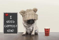 充满坏早晨心情的逗人喜爱的小的哈巴狗小狗,坐在与文本的黑板标志旁边我现在需要咖啡,复制空间 免版税库存图片