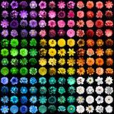 兆盒144在1自然和被隔绝的超现实的蓝色,黄色,红色,绿色,橙色,绿松石,紫罗兰色和桃红色花 免版税库存照片