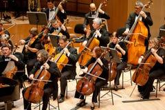 先生交响乐团的乐队执行 库存图片