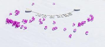 先生& Sign夫人在婚礼的 免版税图库摄影