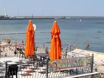 先驱,俄罗斯 在城市海滩的一个类型和海鱼端起 免版税库存照片