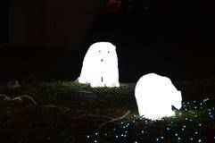 光亮显示北极熊 免版税库存照片