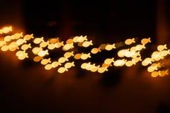光亮的小鱼群明信片题材 免版税库存照片