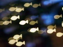 光亮的小鱼群明信片题材 免版税库存图片