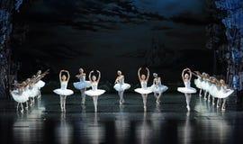 光和阴影在天鹅芭蕾天鹅湖 图库摄影