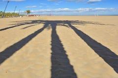 光和阴影在海滩 库存图片