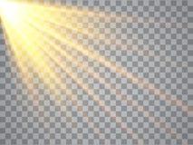 光在透明背景的 金黄聚光灯 向量 库存例证