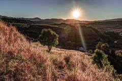 光打破剧烈的天空在日落并且击中了在小山的一棵孤零零树 库存照片