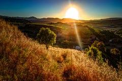 光打破剧烈的天空在日落并且击中了在小山的一棵孤零零树 免版税图库摄影