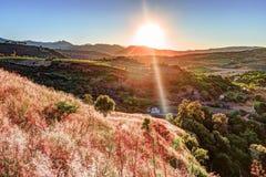 光打破剧烈的天空在日落并且击中了在小山的一棵孤零零树 免版税库存照片