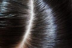 光滑的头发 免版税库存照片